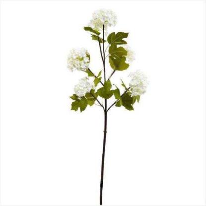 Зображення Калина штучна FLORISTA Білий H:60 см. 10204931