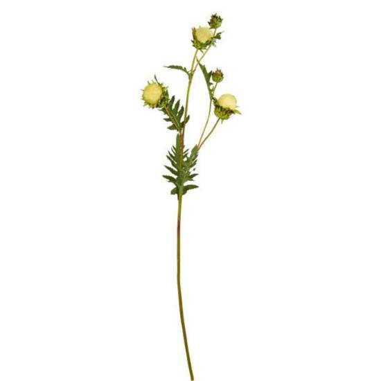 Изображение Чертополох искусственный FLORISTA Белый H:106 см. 10207478