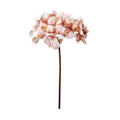 Изображение Гортензия искусственная WINTERGREEN Розовый H:77 см. 10216122