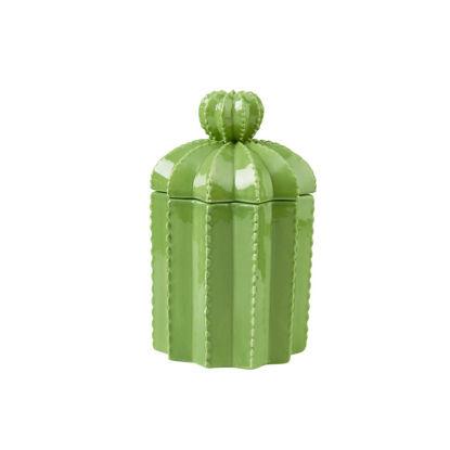 Изображение Емкость для хранения CACTUS Зеленый H:18.5 см. 10218628