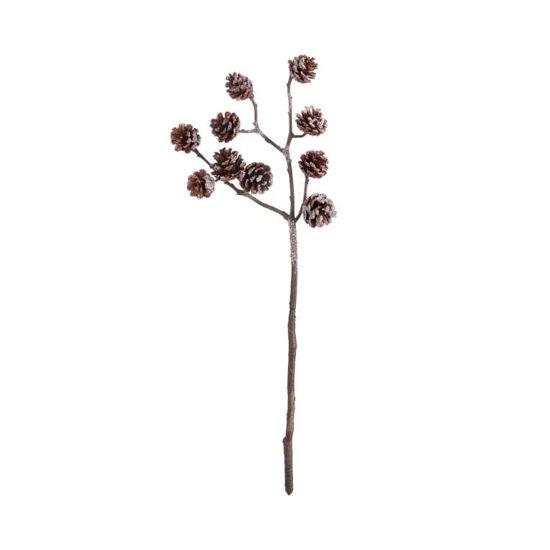 Зображення Гілка штучна FLORISTA Коричневий 56x25 см. L:56 см. 10219952