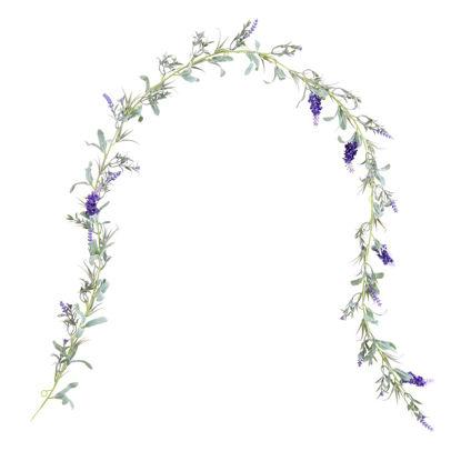Зображення Гілка декоративна FLORISTA Фіолетовий 150x6 см. L:150 см. 10221372