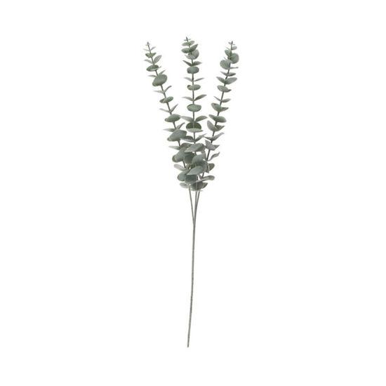 Зображення Гілка евкаліпта FLORISTA Сірий L:60 см. 10224126