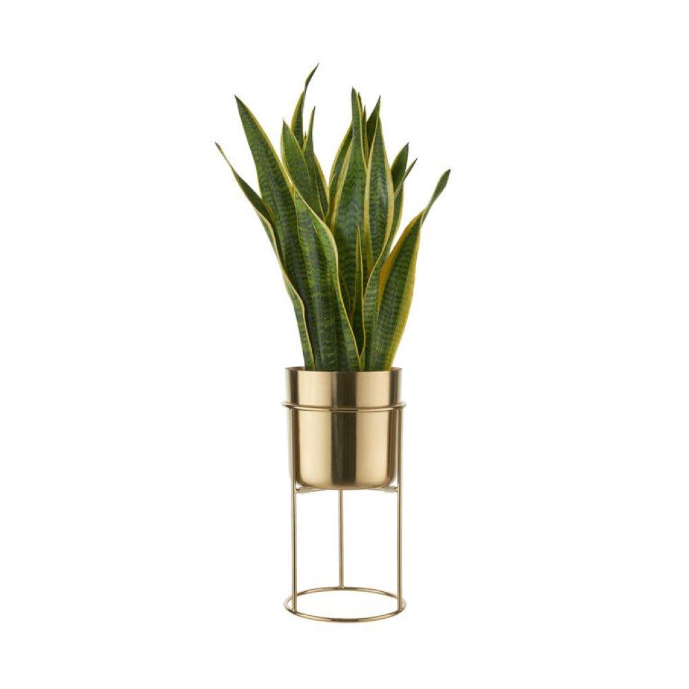 Зображення Горщик для квітів PLANTA Золотий O:20 см. H:40 см. 10224194