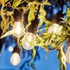 Зображення Гірлянда BULB LIGHTS Комбінований L:80 см. 10224503